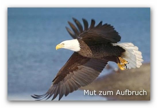 Copyright: Rolf Hicker Fotografie